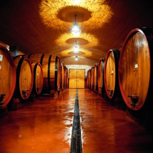 vino-abruzzo