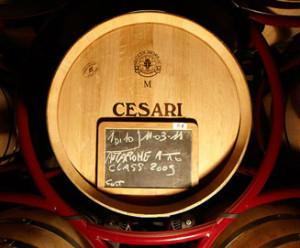 GerardoCesari-vino